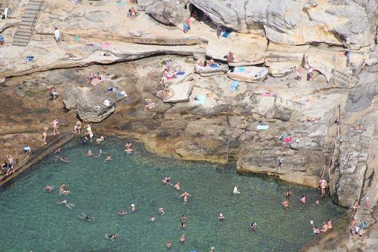 Maroubra, أستراليا: Mahon Pool Maroubra