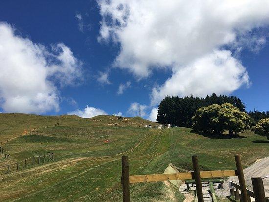 OGO Rotorua: photo1.jpg