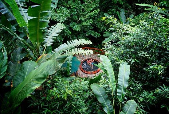 Nayara Resort Spa & Gardens: Nayara Hot Tub