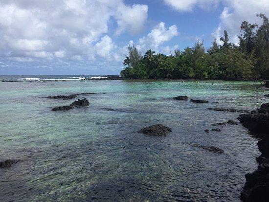 Hale Kai Hawaii Bed & Breakfast: photo3.jpg