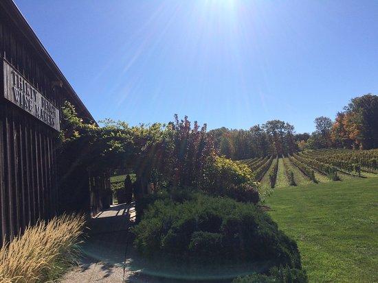 Thirty Bench Wine Makers: photo1.jpg