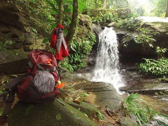 San Felipe, Venezuela: Reserva Ecologica Guaquira