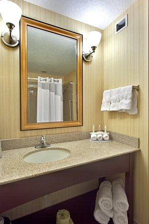 Holiday Inn Express Hotel & Suites Grants-Milan : Holiday inn Express & Suites - Grants/Milan Guest Bathroom