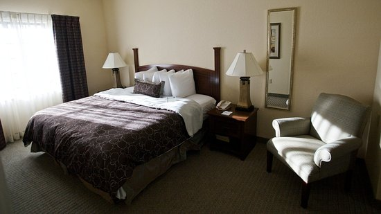 Staybridge Suites San Antonio Sea World: One Bedroom Suite King Bed