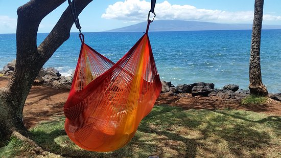 hangloose hammocks hawaii llc  sitting hammocks custom hammocks   picture of hangloose hammocks hawaii llc maui      rh   tripadvisor
