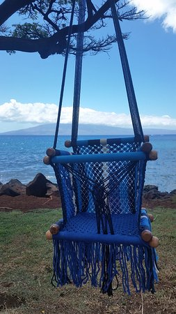 hangloose hammocks hawaii llc  baby hammocks custom hammocks   picture of hangloose hammocks hawaii llc maui      rh   tripadvisor