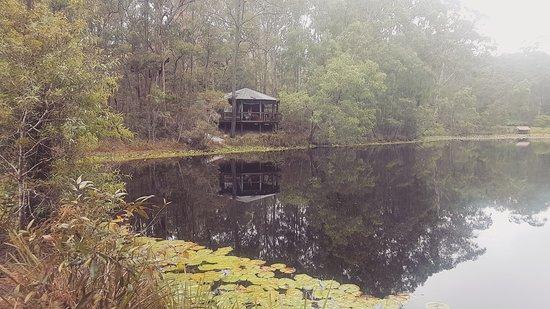 Maraylya, Австралия: IMG_20170203_131537_770_large.jpg