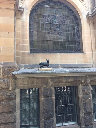 State Library Of New South Wales Trim The Cat On Window Sill