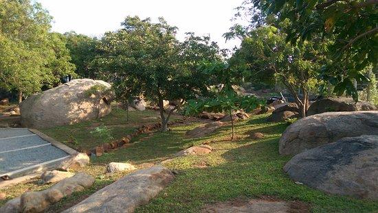 Landscape - Picture of The Rock Hotel, Kirinda - Tripadvisor
