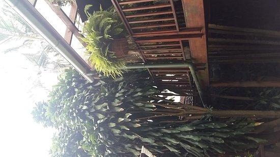 Mythai Guesthouse: 20170203_070654_large.jpg