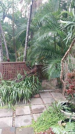 Mythai Guesthouse: 20170203_070609_large.jpg