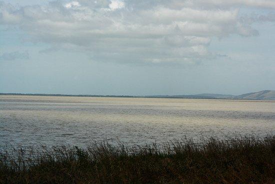 Lake Wairarapa Photo