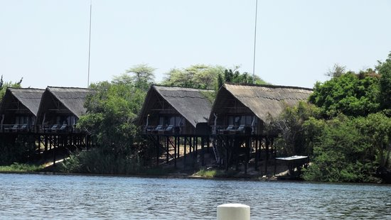 Caprivi Region, Namibia: You came to and from the property via the Chobe River.