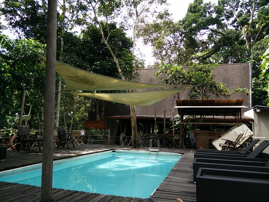 Sukau Rainforest Lodge: IMG_20170130_110519_large.jpg