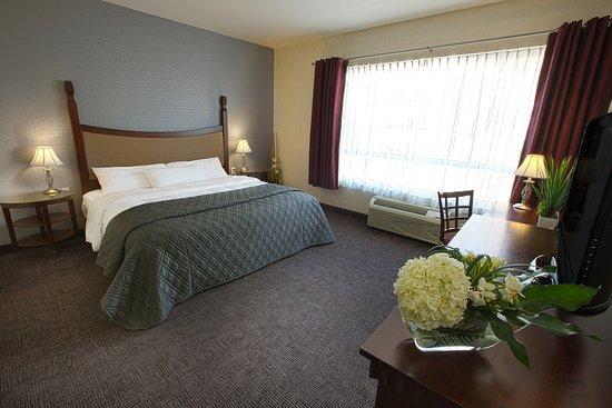 Prestige 1 King Hotel Universel Quebec