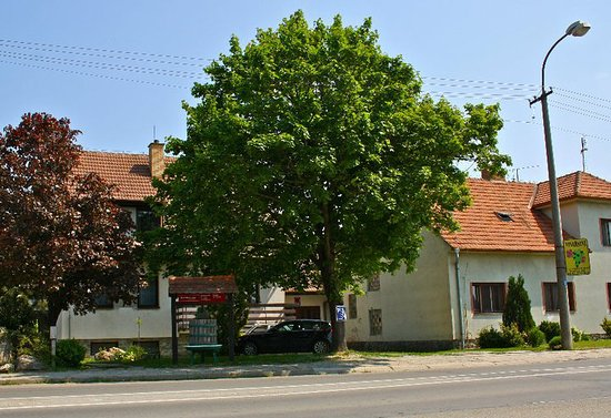 Nosislav, Czech Republic: Our winery from the main road