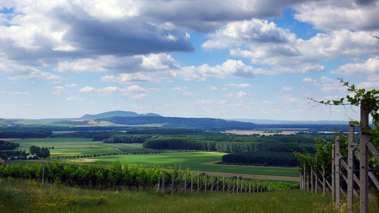 Nosislav, Czech Republic: View from our vineyards