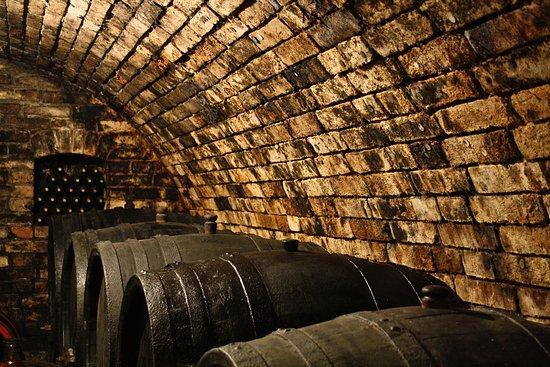 Nosislav, Czech Republic: Our cellar