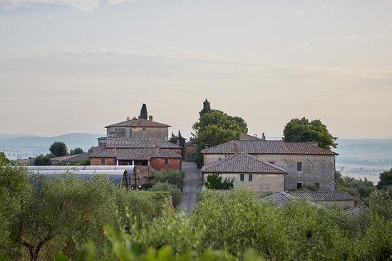 Montestigliano Farm Holidays in Tuscany: view of the Hamlet Montestigliano