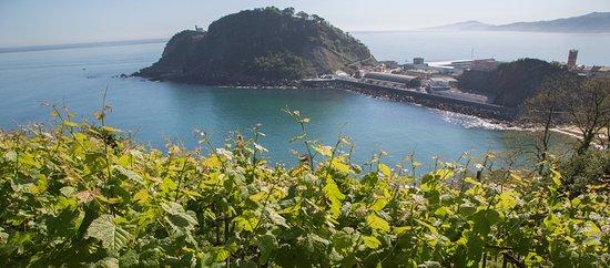 Vistas desde uno de los viñedos de Akarregi Txiki, el Ratón de Getaria.