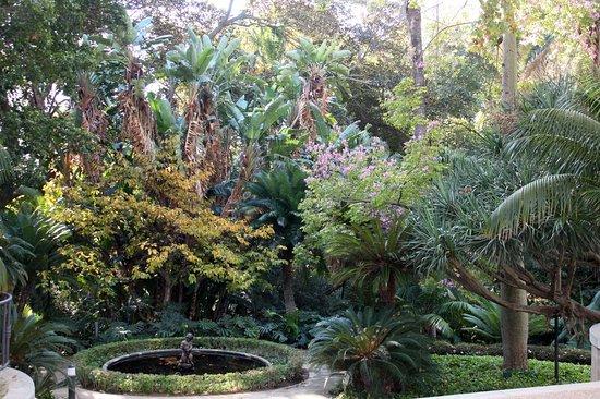 Jardin botanico historico la concepcion malaga all you for Bodas jardin botanico malaga