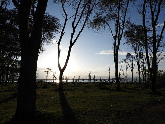 Rift Valley-provinsen, Kenya: ナイバシャ湖の夕方
