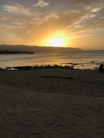 Haleiwa Bowls : Beach to sit at while enjoying a bowl