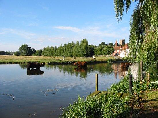 Hotels Near Sudbury Suffolk