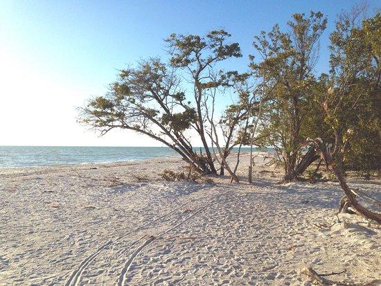 Barefoot Beach Preserve County Park Views