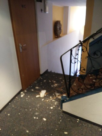 Hotel Am Schloss: IMG_20170203_140853_large.jpg
