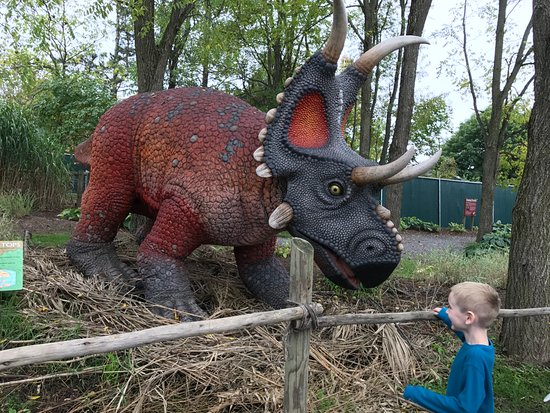 29600ef56f Dino land - Picture of Clyde Peeling's Reptiland, Allenwood ...