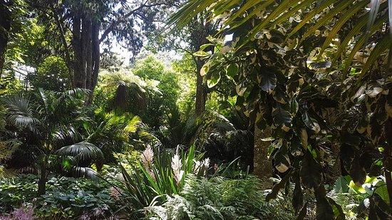 New Plymouth, Nieuw-Zeeland: Pukekura park