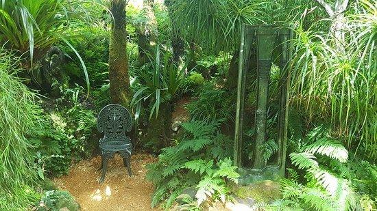 Νέο Πλίμουθ, Νέα Ζηλανδία: Fernery
