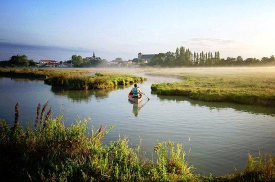 Le marais de Sallertaine de bon matin