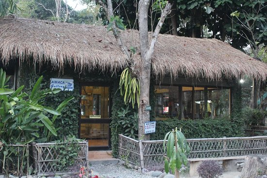 Nameri Eco Camp  Nameri National Park  Assam