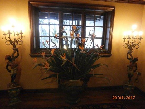 Abaco: Am Fenster mit Strelitzie
