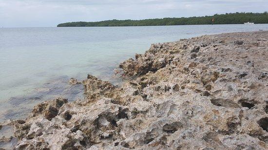 Sombrero Beach: 20170131_114848_large.jpg
