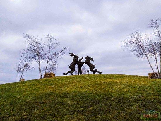 Giant Dancing Rabbits of Ballantrae Park: The sculpture