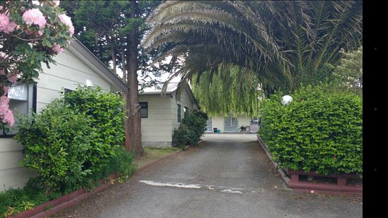 Camellia Court Motel: Caminando hacia las habitaciones