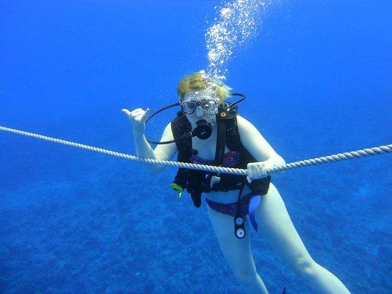 Rainbow Scuba Hawaii: Great diving with Rainbow Scuba!