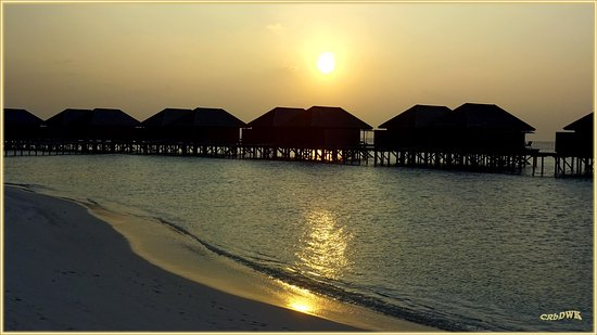 Veligandu Island Resort & Spa: Die Bungalows nach Westen