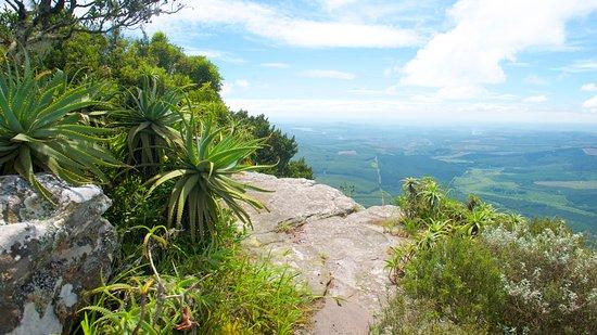 Kruger Ulusal Parkı, Güney Afrika: Panorama tour