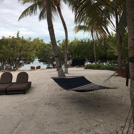 Hyatt Beach House Resort: photo0.jpg