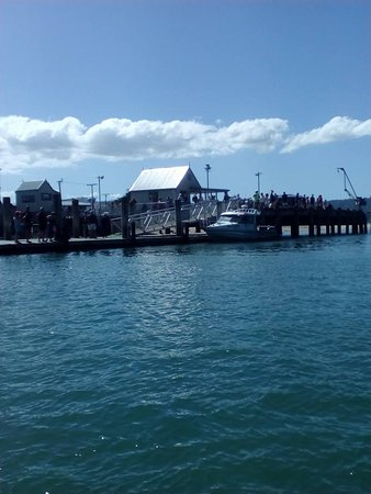 Hahei, New Zealand: Whitianga Harbour