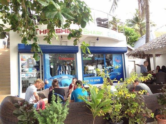 Thresher Shark Divers: Thresher Shark Dive center - shop front