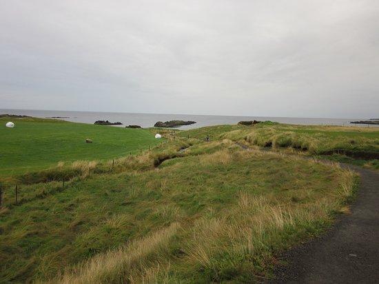 Bifrost, Island: Illugastaðir Farm