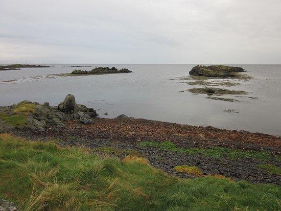 Бифрост, Исландия: Seal Viewing Area at Illugastaðir Farm