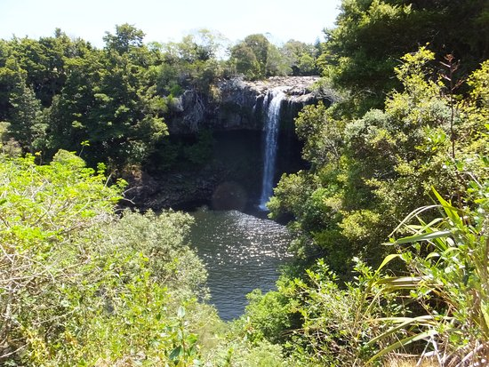 Kerikeri, Neuseeland: Rainbow falls from first viewing platform