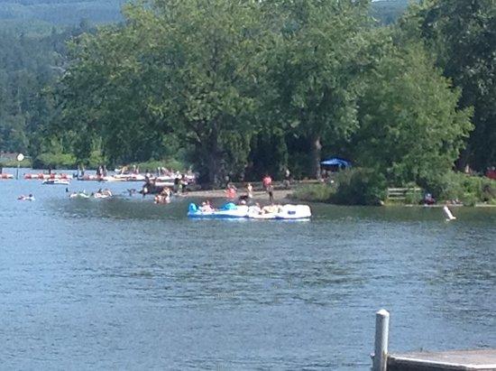 Bloedel Donovan Park: Summer rafts tied together
