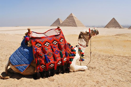Full-day Amazing Tour of the Pyramids...